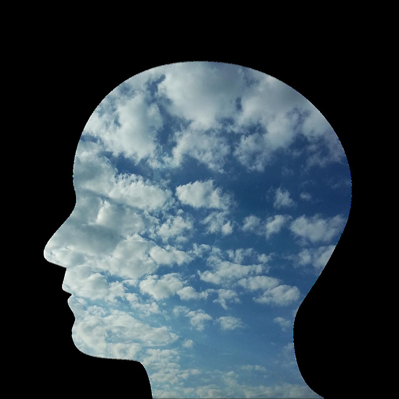 head, man, person-2379686.jpg